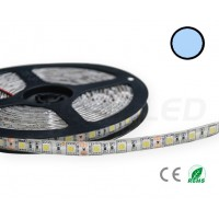 Cool White LED strip IP65