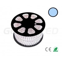 LED Coil SMD5050 60 LED/m Cold White (50 Metres)