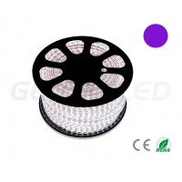 LED Coil SMD5050 60 LED/m purple (50 Meters)