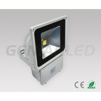 80W floodlight