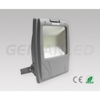Frosted 50W floodlight